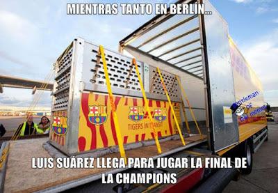 Los mejores memes Juventus-Barcelona: Final Champions 2015 suarez tiranozuarez rex