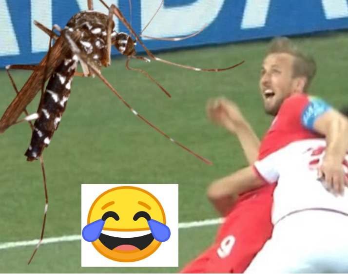 memes mosquitos inglaterra tunez mundial rusia